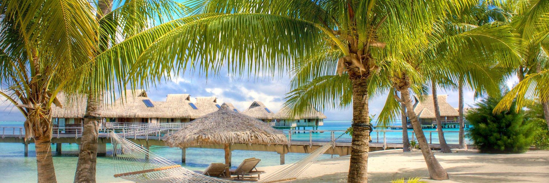 Туры в Доминикану 2021, путевки из Москвы - цены на отдых в Доминикане - ПАКС